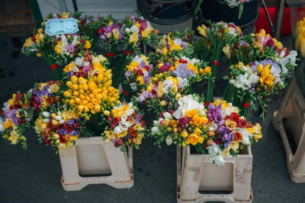 Flower Box Design: Prepare At Home For Your Kids School Project